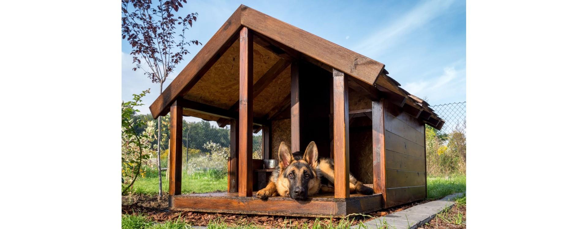 Rivestire Un Arco In Legno come costruire una cuccia per cani in legno - a proposito di