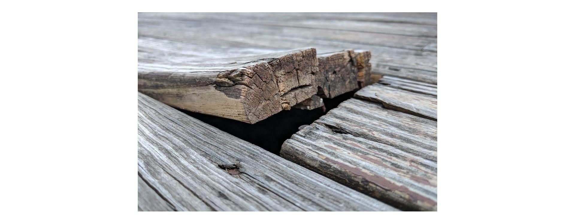 Difetti del legno: quali sono e cosa comportano